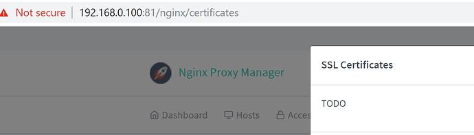 Community Hass io Add-on: Nginx Proxy Manager - Hass io