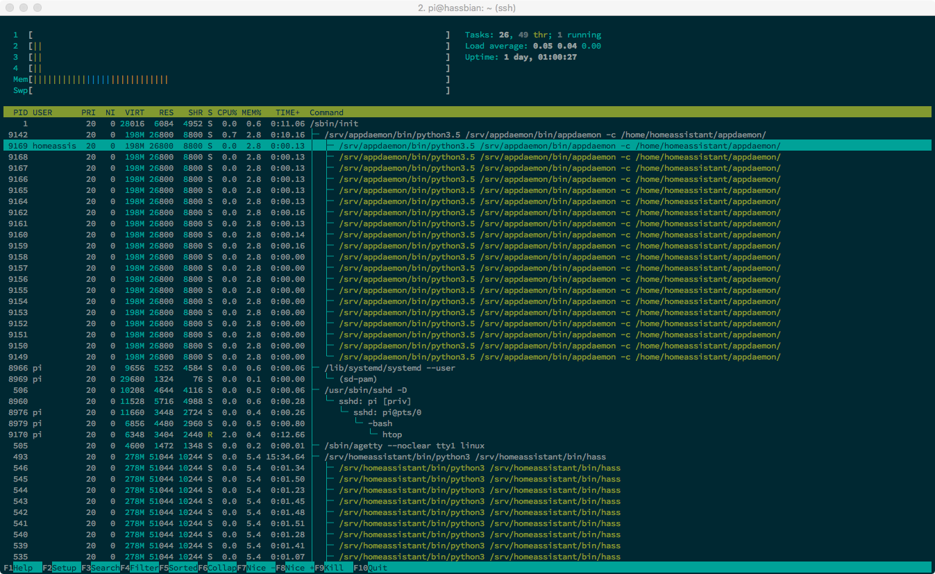 hasbian-htop-before